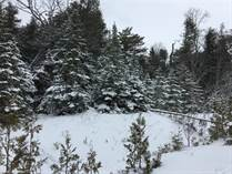 Lots and Land for Sale in Lion's Head, Ontario $46,900