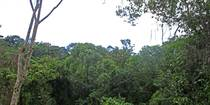 Lots and Land for Sale in Lagunas, Puntarenas $55,900