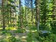 Lots and Land for Sale in Libby, Montana $1,100,000