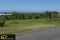 Lots and Land for Sale in Bo. Membrillo, Camuy, Puerto Rico $70,000
