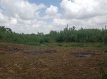 Lots and Land for Sale in Ruiru KES59,500,000