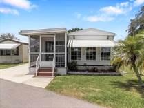 Homes for Sale in Bakers Acres, Zephyrhills, Florida $13,900