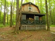 Homes for Sale in Susquehanna, Pennsylvania $50,000