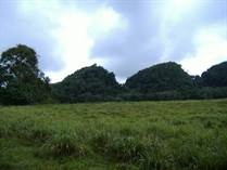 Lots and Land for Sale in Piedra Gorda, Camuy, Puerto Rico $150,997
