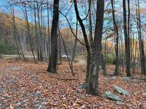Lots and Land for Sale in Cacapon East, Berkeley Springs, West Virginia $50,000