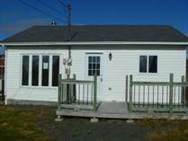 Homes for Sale in Whitbourne, Newfoundland and Labrador $51,000