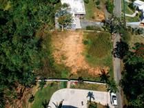Lots and Land for Sale in Bo. Cruz, Moca, Puerto Rico $50,000