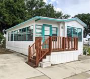 Homes for Sale in Hawaiian Isles, Ruskin, Florida $24,900