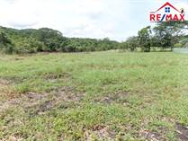 Lots and Land for Sale in San Ignacio, Cayo $16,000