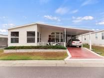 Homes for Sale in Forest Lake Estates, Zephyrhills, Florida $39,900