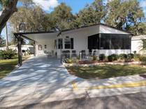 Homes for Sale in Forest Lake Estates, Zephyrhills, Florida $34,700