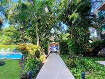 Condos for Sale in Centro, Playa del Carmen, Quintana Roo $220,000