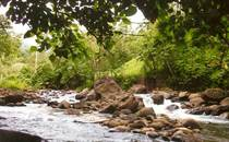 Farms and Acreages for Sale in Ballena, Puntarenas $275,000