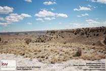 Lots and Land for Sale in Pueblo West Liberty Point, Pueblo West, Colorado $59,500