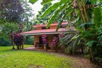 Homes for Sale in Puntarenas, Puntarenas $109,000