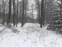 Homes for Sale in Stanton, Michigan $18,000