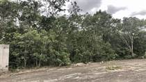 Lots and Land for Sale in La Joya , Playa del Carmen, Quintana Roo $47,500