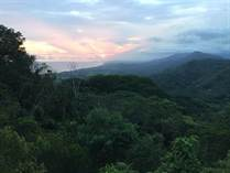 Lots and Land for Sale in Lagunas, Puntarenas $349,000