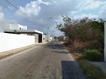 Lots and Land for Sale in Merida, Yucatan $550,000