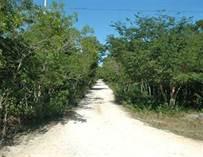 Lots and Land for Sale in Santa Teresita, Akumal, Quintana Roo $70,000