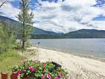 Commercial Real Estate for Sale in Shuswap/Revelstoke, SEYMOUR ARM, British Columbia $799,500