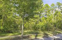 Lots and Land for Sale in Tyler, Texas $77,500