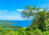 Lots and Land for Sale in Matapalo Beach , Guanacaste $139,000