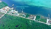 Homes for Sale in San Pedro, Ambergris Caye, Belize $250,000
