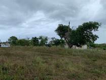 Lots and Land for Sale in BO HATO ABAJO, Arecibo, Puerto Rico $49,900