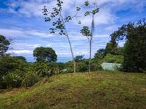 Lots and Land for Sale in Uvita, Puntarenas $199,000