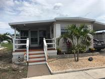 Homes for Sale in Honeymoon MHP, Dunedin, Florida $75,000