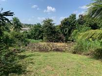 Lots and Land for Sale in Caldas, San Juan, Puerto Rico $350,000