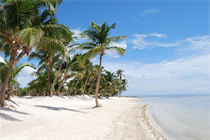 Condos for Sale in North Island Area, Ambergris Caye, Belize $180,000