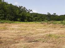 Lots and Land Sold in Ensenada, Rincon, Puerto Rico $77,321