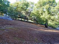 Lots and Land for Sale in Kelseyville, California $75,000