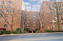 Homes for Rent/Lease in Broadway, White Plains, New York $2,050 monthly