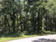 Lots and Land for Sale in Citrus Spring, Citrus Springs, Florida $6,500