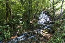 Farms and Acreages for Sale in Platanillo, Dominical, Puntarenas $999,000
