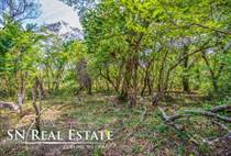 Lots and Land for Sale in Nosara, Guanacaste $69,000