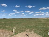 Farms and Acreages for Sale in Seven Persons, Alberta $595,000