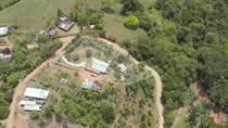 Homes for Sale in Tinamastes, Puntarenas $95,000