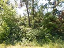 Lots and Land for Sale in Wisconsin Dells, Wisconsin $37,500