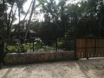 Lots and Land for Sale in SacBe, Playa del Carmen, Quintana Roo $88,372