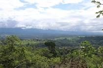 Lots and Land for Sale in San Isidro de El General, San José $119,000