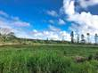 Lots and Land for Sale in Mountain View, Hawaii $55,000
