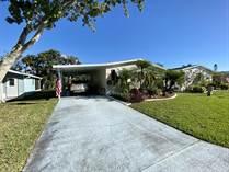 Homes for Sale in Island Lakes, Merritt Island, Florida $98,700