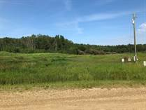 Lots and Land for Sale in Lac Ste. Anne, Alberta $85,900