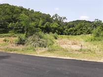 Lots and Land Sold in Ensenada, Rincon, Puerto Rico $82,951