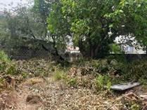 Lots and Land for Sale in Bf International Las Pinas, Las Pinas, Metro Manila ₱11,360,000