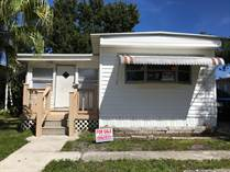 Homes for Sale in Carefree Village, Tampa, Florida $35,000